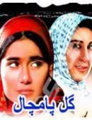 سریال ایرانی گل پامچال