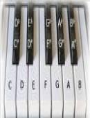 آموزش ارگ و پیانو (قابل اجرا در کامپیوتر)