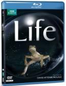مستند زندگی BBC Life